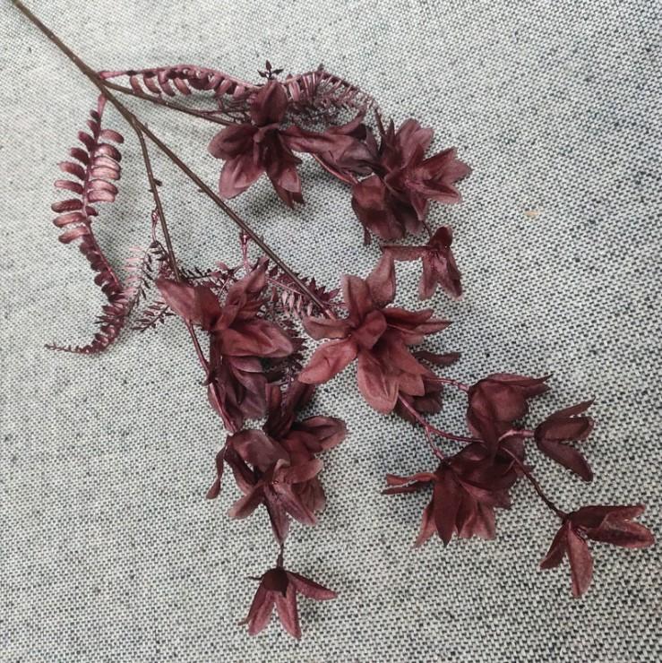 canh hoa phong lan mo phong