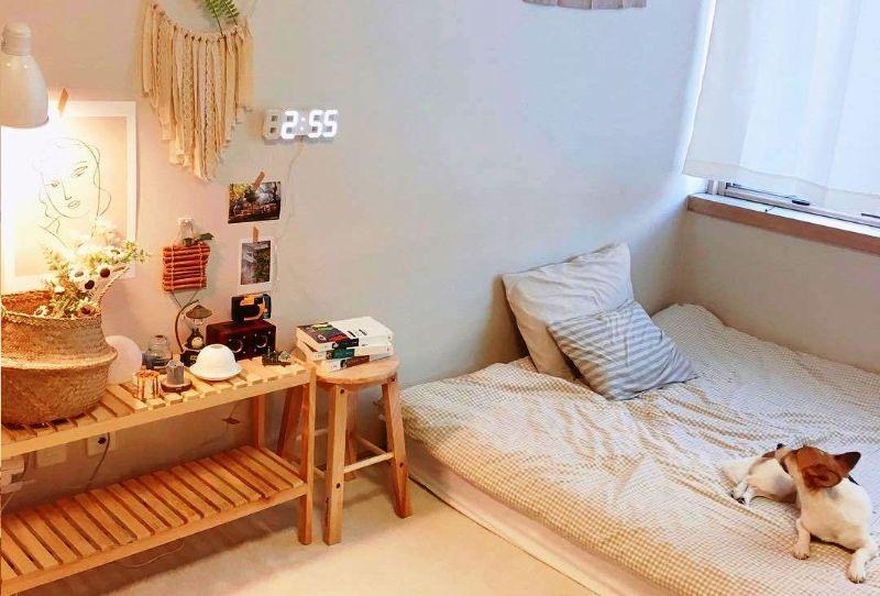 Nguồn ánh sáng tự nhiên giúp không gian phòng ngủ trở nên bắt mắt